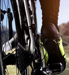 Posture du cycliste